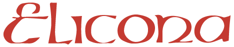 logo elicona footer